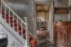Red carpet – Celina Dorrestein