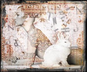 Wild bunny I – Hans Jochem Bakker