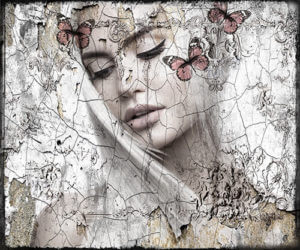 See the butterfly – Hans Jochem Bakker