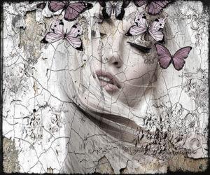 Feel the butterfly – Hans Jochem Bakker