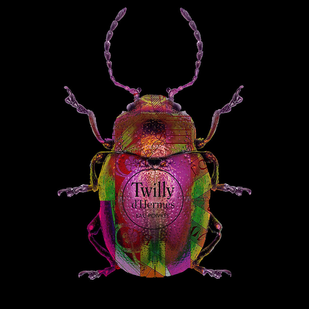 Lucky Beetle Twilly – Blitsz by Mascha