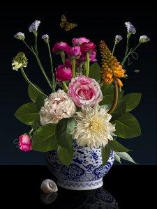 Royal Rose – Sander van Laar