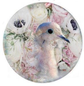 Silver Dove of Peace – Mascha de Haas
